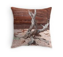 Tree Sculpture, Nature's Window, Kalbarri, Western Australia Throw Pillow