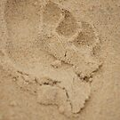 footprints in the sand by Matt  Williams