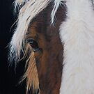 Ellroy by Pauline Sharp
