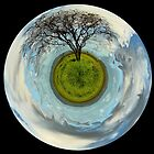 One tree planet by Jayson Gaskell