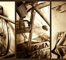 A bicycle for the forgotten by Fiona Christensen