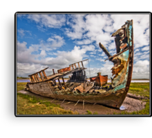 A bit of tlc required!!! Canvas Print
