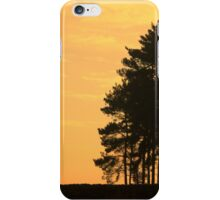 Bradgate Sunset iPhone Case/Skin