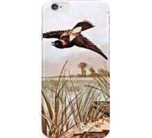 Bobolink Bird Vintage Illustration iPhone Case/Skin