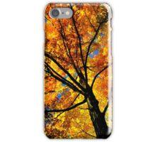 Fall Gamma  iPhone Case/Skin