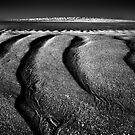 Evening Sandlines, Cape Leveque by Mark Boyle