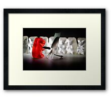 Gummy Bear Photography - Sharing A Workflow Framed Print