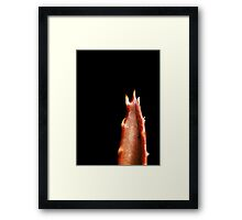 Sharp Tongue Framed Print
