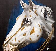 Precious Appaloosa by Pauline Sharp