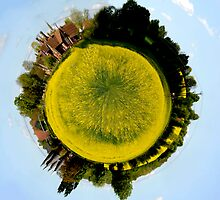 Circular fields by Simon Hackney