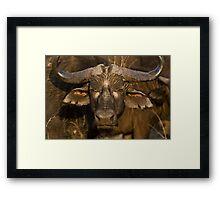 It's No Bull Framed Print