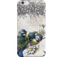 Vintage Birds Crackle Grunge iPhone Case/Skin