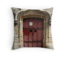 Medieval door, Paris, France Throw Pillow