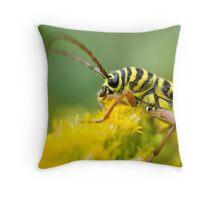 Locust Borer (Megacyllene robiniae) Throw Pillow