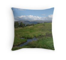 Cairngorms National Park Throw Pillow