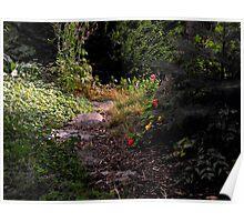 Garden Path Poster