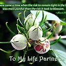 Life Partner Card by Greeting Cards by Tracy DeVore
