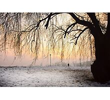 Wintry Sunset Photographic Print