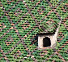 Green Tiled Roof by Kris McLennan