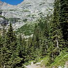 Hiking Rocky Mountain National Park by Luann wilslef
