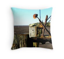 Bolt from the Blue.... Throw Pillow