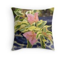 Potted Bougainvillea Throw Pillow