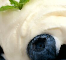 Blueberries & Cream by Wendy Kennedy