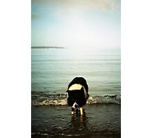 Indy in the sea Photographic Print