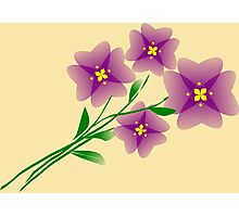 Mauve flowers on a beige background Photographic Print