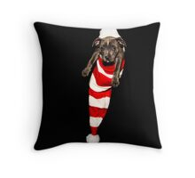 LOOK WHAT SANTA DELIVERED Throw Pillow