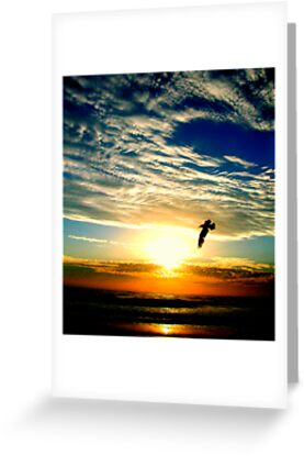 SUNRISE FLIGHT (SPIRITUALITY) by Scott  d'Almeida