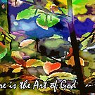 Nature is the Art of God by Samitha Hess Edwards