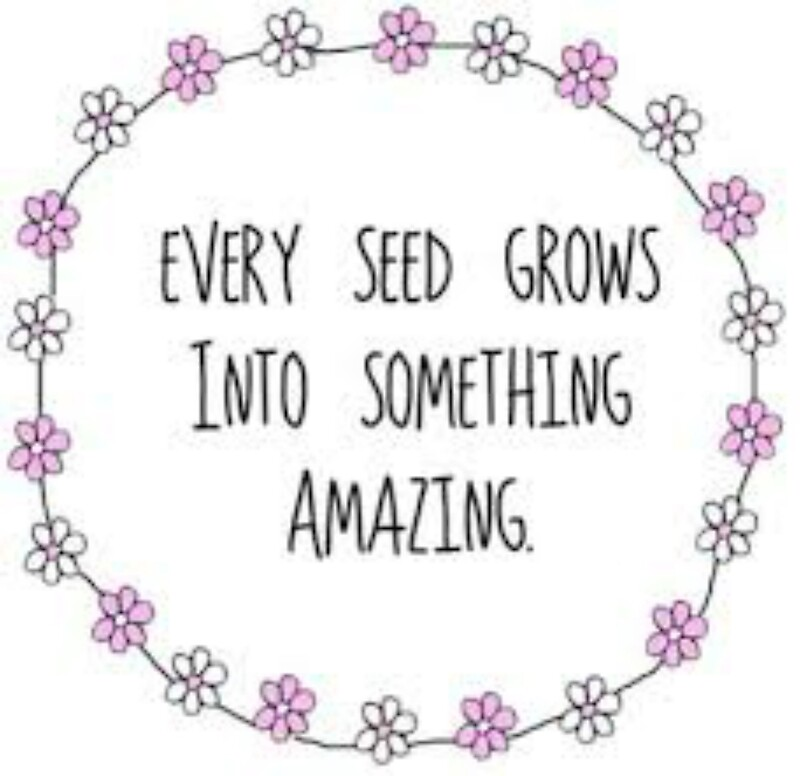 "Something Amazing: ""Every Seed Grows Into Something Amazing"" By Project-hip"