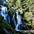 National Falls 2 by Stephen  Van Tuyl