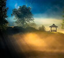 Morning Below Lake Lanier - North Georgia Landscape by Mark Tisdale