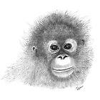 Baby Orangutan by rosannamaria