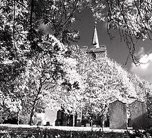 Stebbing Church by Nigel Bangert