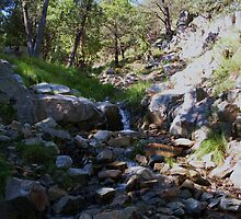 Snow runoff,Madera canyon ! by DaveDawdy