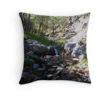 Snow runoff,Madera canyon ! Throw Pillow