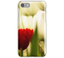 The Beauty in Difference iPhone Case/Skin