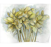 Daffodilia Poster