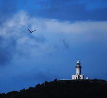 Eagle in flight over Byron by splitsie