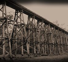 Nowa Nowa trestle bridge by scarlettheartt