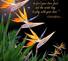 Bird of Paradise flowers with Kahlil Gibran quote by Irisangel
