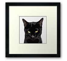unamused cat disapproves  Framed Print