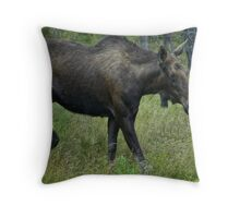 Canadian Moose Throw Pillow