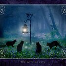 2010 calendar : The Witches Cats by Angie Latham