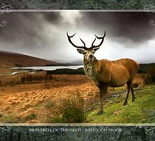 Wild Scotland Calendar 2010 : Monarch of the Glen by Angie Latham