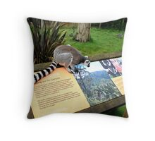 I'm still looking. Throw Pillow