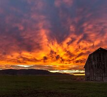 Superman Sunrise - Breeza NSW by Beth  Wode